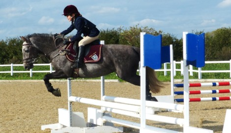 Show Jumping Stars