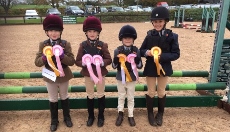 Show Jumping Success