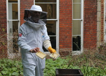 Launching the new Bee Keeping Club