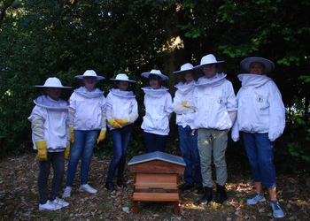Bee Keeping club