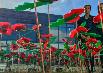 Blackheath High School Students Create Touching Poppy Tribute