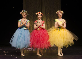 Waiting in the Wings: the Blackheath High School ballerinas perform the role of fairies in Sleeping Beauty