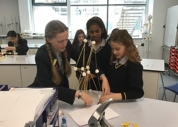 Building towers with spaghetti and marshmallows in STEM/STEAM Club