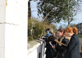 Eco Club takes part in the RSPB Big Schools Birdwatch 2020