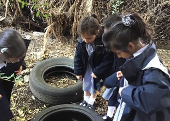 Reception update: Celebrating the Harvest Festival
