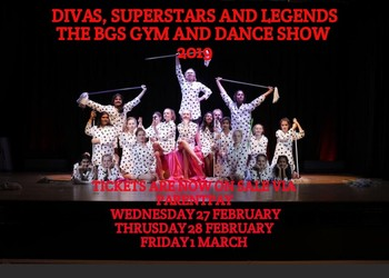Divas, Superstars and Legends: the 2019 BGS Gym and Dance Show