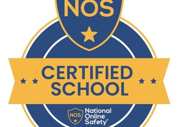 National Online Safety - Accreditation 2020-2021