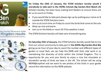 STEM Scholars Society - RSPBs Schools Big Garden Bird Watch 2020