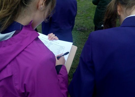 Year 7 Geography walks on the common