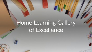 Gallery of Excellence