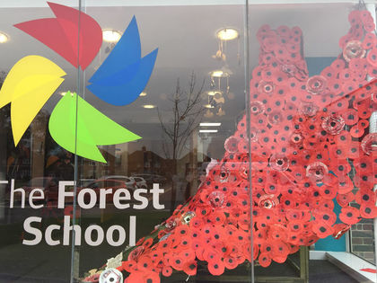 Poppy Installation November 2017