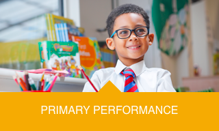 View Our Primary Performance