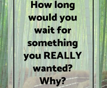 How long would you wait (1)