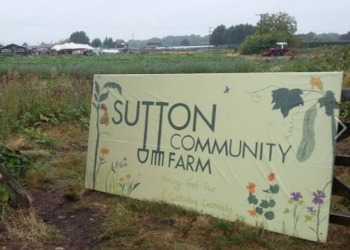 Trip to Sutton Farm