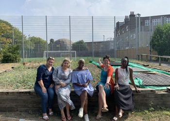 New Community Allotment at Mulgrave