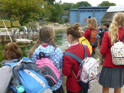 Year 7 at Marwell Zoo