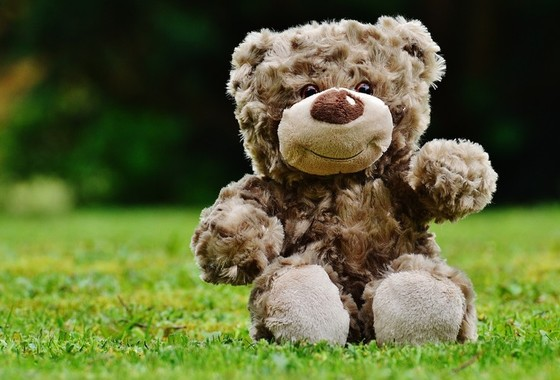 Toddler Group Teddy Bears' Picnic