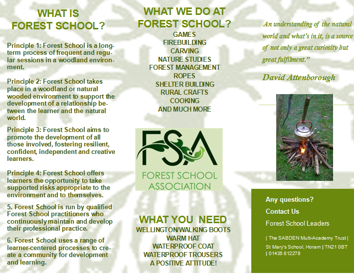 FS2 leaflet (use this)