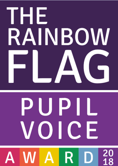 Rainbow flag pupil voice
