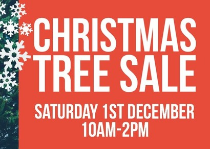 Christmas Trees For Sale at St Charles - Saturday 1st November
