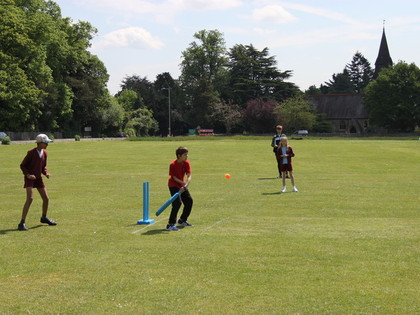 Kwik Cricket Festival May 2016