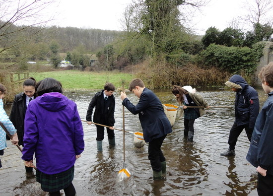 Science students release fish into the River Chess