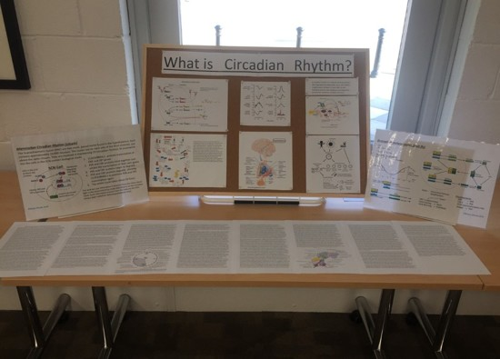 Students showcase EPQ projects at Presentation Evening