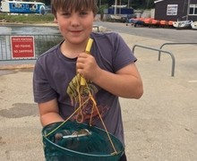Crabbing in poole 1