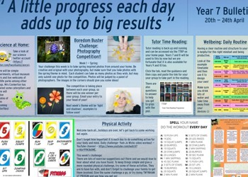 Weekly Bulletin Issue 3