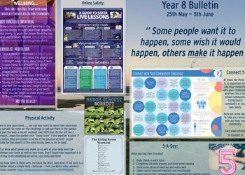Weekly Bulletin Issue 8