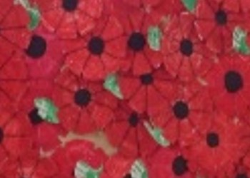 Remembrance Day - 9th Nov 2018