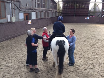 2018 - Term 1 - Horse riding lessons for Owl Class