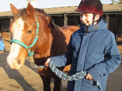 2017 - Term 1/2 - HorseWorld Course Y7-Y8