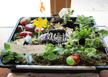 Year 1 Tray Garden Project