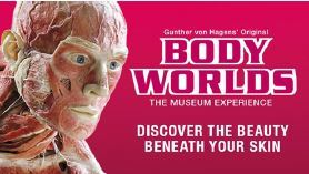 Body world 1