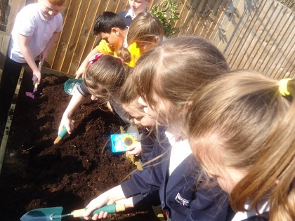 Science Garden Y6 March 2016